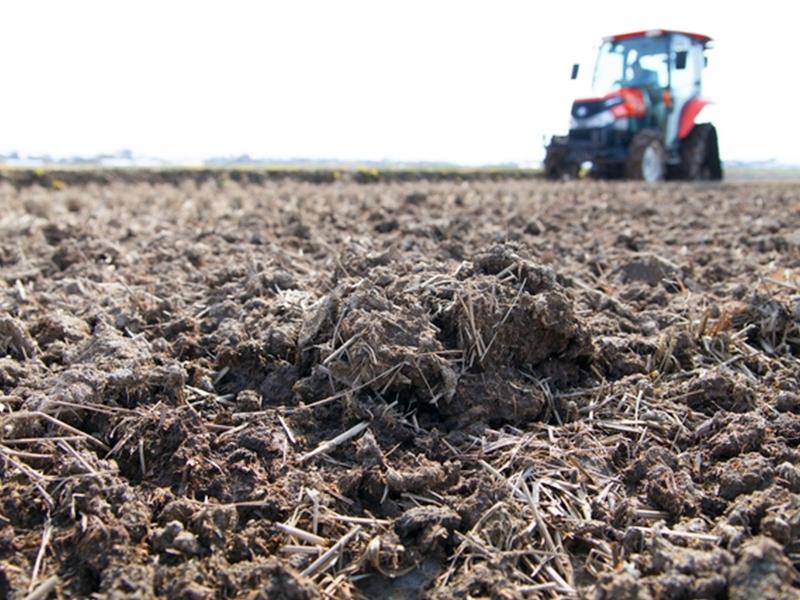 農産物栽培に最適な土壌