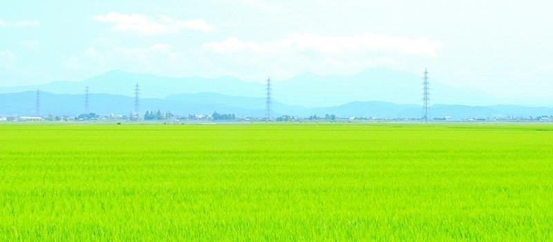 山之内農産の理念